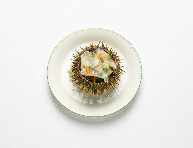 Oursin vivant, lard de colonnata - Christophe Pelé - YAM Cuisine